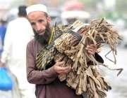 راولپنڈی: محنت کش پھیری لگا کر داتن اور مسواکیں فروخت کررہا ہے۔