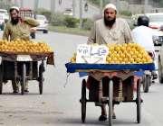 راولپنڈی: ریڑھی بان پھیری لگا کر آم فروخت کر رہے ہیں۔