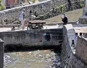 راولپنڈی: پیر ودھائی کو ڈھوک منگٹال سے ملانے والے پل پر گرل نہ ہونے ..