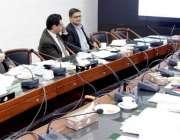 لاہور:صوبائی وزیرخزانہ مخدوم ہاشم جواں بخت گرین ڈویلپمنٹ پروگرام میں ..