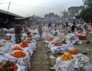 فیصل آباد: فروٹ منڈی میں گاہکوں کو متوجہ کرنے کے لیے کینو سجائے گئے ..