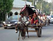 فیصل آباد: خانہ بدوش فیملی گدھا ریڑھی پر سوار اپنی منزل کی جانب رواں ..