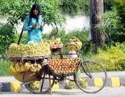 راولپنڈی: محنت کش سائیکل پرفروٹ سجاۓ گا ہکوں کا انتظار کر رہا ہے۔
