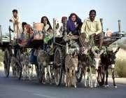 لاڑکانہ: خانہ بدوش خاندان گدھا ریڑھیوں پر سامان لادھے اپنی منزل کی ..