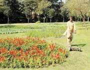 لاہور: پی ایچ اے کا اہلکار جیلانی پارک میں گھاس کاٹ رہا ہے۔