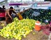 حیدر آباد: دکاندار گاہکوں کو متوجہ کرنے کے لیے خربوزے سجا رہاہے۔