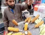 راولپنڈی: ریڑھی بان گاہکوں کو متوجہ کرنے کے لیے بھٹے بھون رہا ہے۔