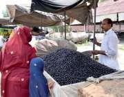 لاہور: خاتون ریڑھی بان سے جامن خرید رہی ہے۔