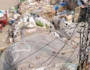 لاہور : علامہ اقبال ٹاؤن میں خالی پلاٹوں میں پڑا کباڑڈینگی کے خلاف نبردآزما ..