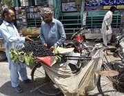 فیصل آباد: محنت کش پھیری لگا کر جامن فروخت کر رہا ہے۔