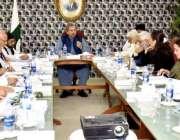 کراچی: وفاقی وزیر تعلیم و پیشہ ورانہ تربیت شفقت محمود کی زیر صدارت قائداعظم ..