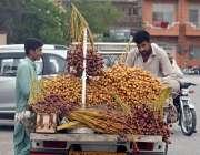 راولپنڈی: دکاندار نے گاہکوں کو متوجہ کرنے کے لیے تازہ کھجوریں سجا رکھی ..