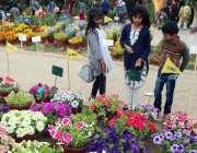 کراچی: ڈی ایچ اے کے زیر اہتمام سالانہ فلاور شو میں بچوں کی دلچسپی۔