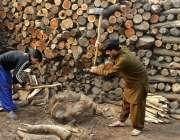 لاہور: محنت کش ٹال پر لکڑیاں کاٹنے میں مصروف ہے۔