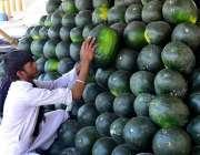 حیدر آباد: دکاندار نے گاہکوں کو متوجہ کرنے کے لیے تربوز سجا رکھے ہیں۔