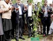 لاہور: صوبائی وزیر اطلاعات و ثقافت سید صمصام بخاری شجرکاری مہم کے سلسلے ..