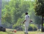 راولپنڈی: پی ایچ اے اہلکار سڑک کنارے گرین بیلٹ پر لگی گھاس کاٹ رہا ہے۔