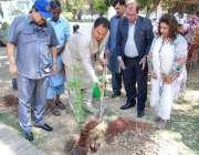 اسلام آباد: ڈپٹی میئر اسلام آباد ذیشان نقوی آگاہی مہم کے دوران پودا ..