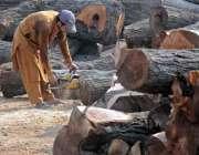 راولپنڈی: ٹمبر مارکیٹ میں ایک مزدورلکڑی کی کٹائی میں مصروف ہے۔