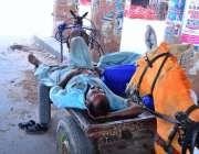 حیدر آباد: محنت کش کام نہ ہونے کے باعث دوپہر کے وقت آرام کر رہا ہے۔