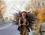 گلگت: معمر شہری گھر کا چولہا جلانے کے لیے خشک لکڑیاں جمع کیے لیجا رہا ..