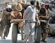 راولپنڈی: ٹمبر مارکیٹ میں مزدور بھاری لکڑی ہتھ ریڑھے پر لادے دھکا لگار ..