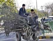 اسلام آباد: نوجوان خشک ٹہنیاں گدھا ریڑھی پر رکھے جارہے ہیں۔