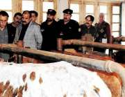مظفر آباد: وزیر اعظم آزاد کشمیر راجہ محمد فاروق حیدر خان محکمہ لائیو ..