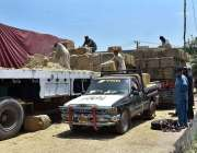 پشاور: مزدور ٹرک پر توڑی لوڈ کر رہے ہیں۔