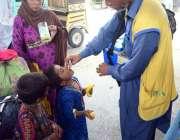 حیدر آباد: انسداد پولیو مہم کے دوران ایک بچے کوپولیو کے قطرے پلائے جا ..