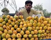 لاہور: ایک پھل فروش گاہکوں کو متوجہ کرنے کے لیے آم ریڑھی پر جا رہا ہے۔