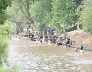 لاہور: شہری گرمی کی شدت کم کرنے ک لیے نہر میں نہا رہے ہیں۔