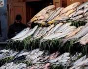 اسلام آباد: دکاندار نے مچھلیاں فروخت کیلئے سجا رکھی۔