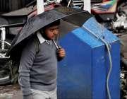 اسلام آباد: طالبعلم چھٹی کے بعد بارش سے بچنے کے لیے چھتری تھامے گھر ..