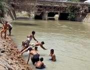 حیدر آباد: نوجوان گرمی کی شدت کم کرنے کے لیے نہر میں نہا رہے ہیں۔