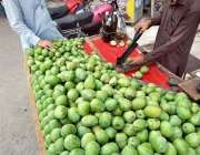 راولپنڈی: ریڑھی بان گاہکوں کو متوجہ کرنے کے لیے اچاری آم کاٹ رہا ہے۔