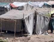 پشاور: خانہ بدوش خاتون رنگ روڈ پر اپنا عارضی گھر بنانے میں مصروف ہیں۔