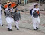 اسلام آباد: سکول جاتے بچوں نے بارش سے بچنے کے لیے چھتری تان رکھی ہے۔