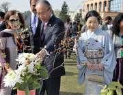 اسلام آباد:  جاپانی سفیر نینوری میتسوڈا نیشنل یونیورسٹی آف ماڈرن لینگویجز ..