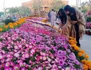 سکھر: موسم بہار کی آمد کے موقع پر آئی بی اے یونیورسٹی کی جانب سے لگائی ..