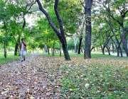 اسلام آباد: وفاقی دارالحکومت میں موسم خزاں کے موسم میں درختوں کے سوکھے ..