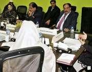 لاہور: ممبر سینیٹ سٹینڈنگ کمیٹی برائے انفارمیشن ٹیکنالوجی اینڈ ٹیلی ..