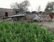 لاہور: نواحی گاؤں میں کسان کھیت کے قریب بیٹھے حکہ پی رہے ہیں۔