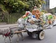 لاہور: ایک محنت کش گدھا ریڑھی پر تھیلے لوڈ کر کے لیجا رہا ہے۔