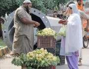 لاہور: ایک خاتون امرود خرید رہی ہے۔