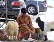 راولپنڈی: ایک نوجوان موبائل پر گیم کھیلنے میں مصروف ہے۔