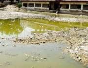 کراچی: ملیر سعود آباد کے علاقے میں واقع یو بی ایل یو نین اسپورٹس کرکٹ ..