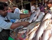 سرگودھا: باڑہ مارکیٹ میں صارفین کو راغب کرنے کے لئے مچھلیاں دکھاتے ..