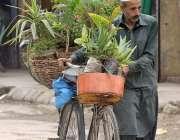 راولپنڈی: محنت کش پھیر لگا کر پودے فروخت کررہا ہے۔