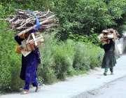 اسلام آباد: خانہ بدوش خواتین گھر کا چولہا جلانے کے لیے خشک لکڑیاں جمع ..